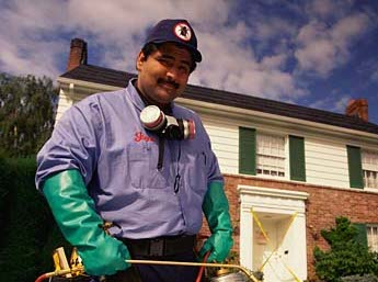 Pest Control Marlton NJ