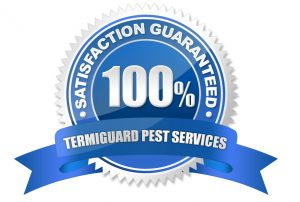 South Jersey Pest Control Services